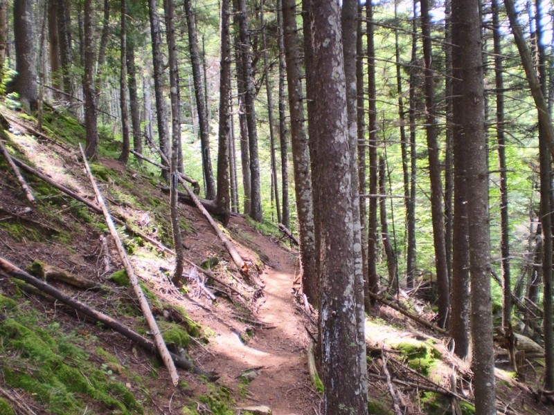 Notch Trail on hillside (Credit: Maine Bureau of Parks and Lands)
