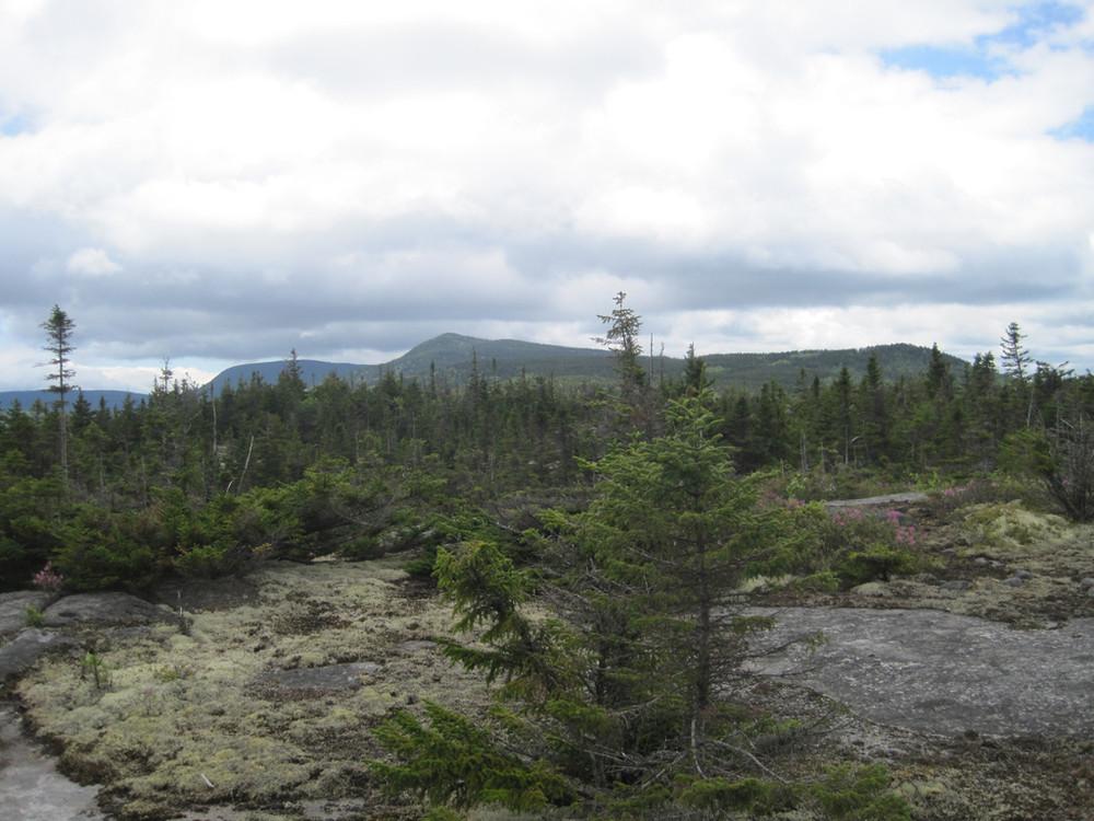 On the ridge to Bemis (Credit: Bill Geller)