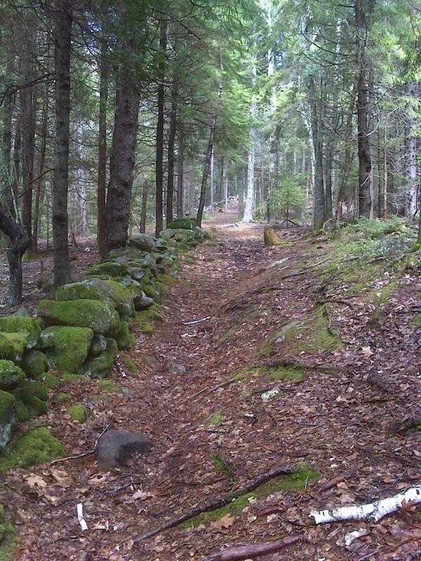 Perkins Farm Trail (Credit: Maine Bureau of Parks and Lands)