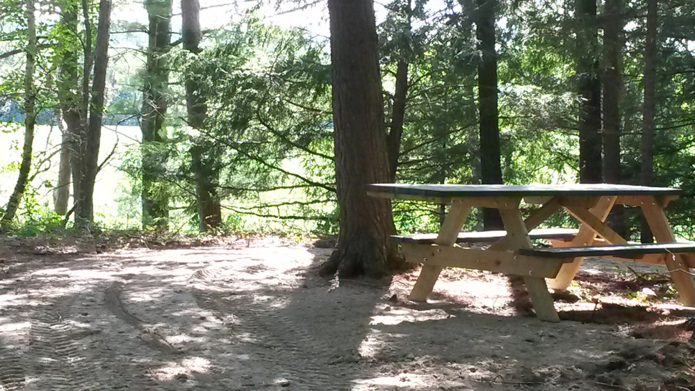 Accessible Picnic Table on West Loop (Credit: MLT)