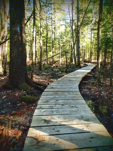 South Loop Trail (Credit: ME BPL)