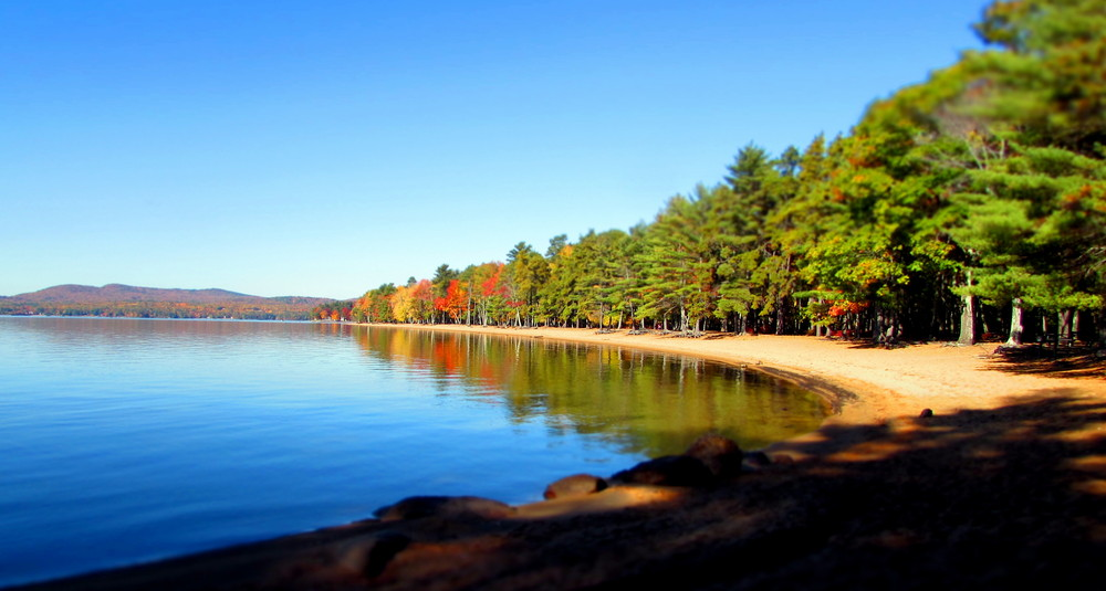 Fall at the shore line (Credit: gary janson)