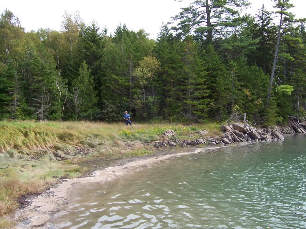 Shoreline (Credit: Downeast Coastal Conservancy)