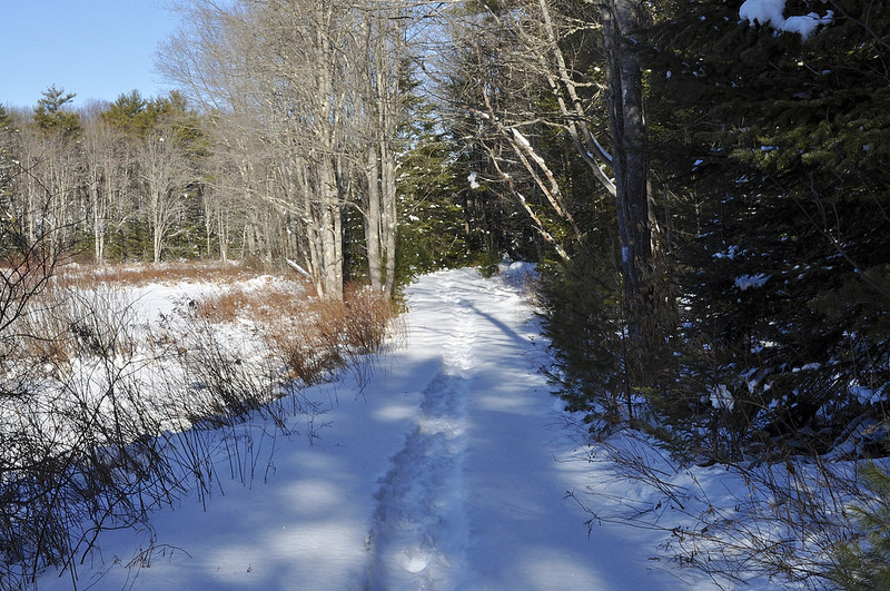 Trails of packed snow in the winter (Credit: Saco Bay Trails)