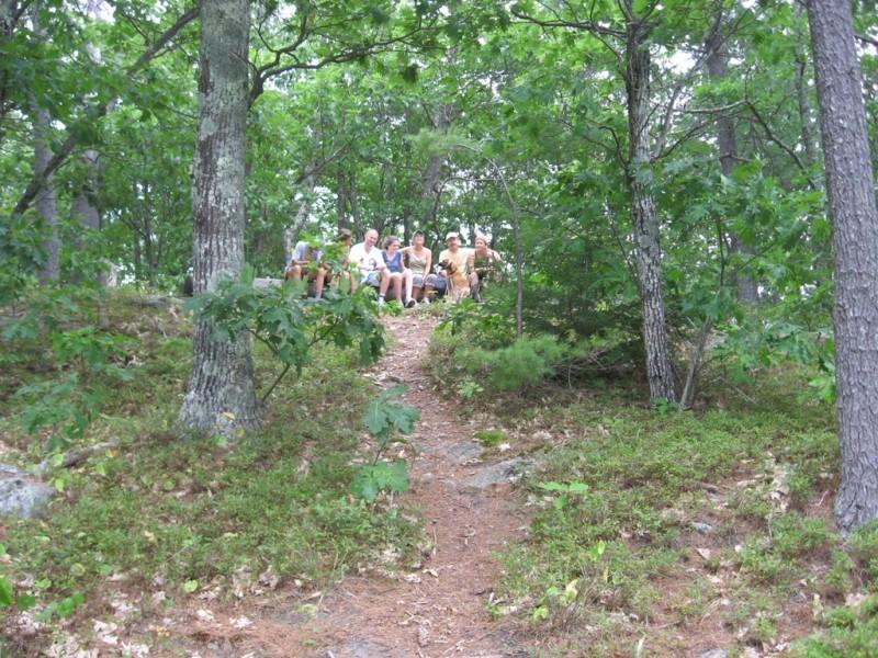 The Yellow Trail (Credit: Landon Fake)