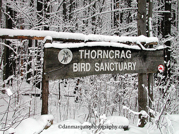 Welcome sign in winter (Credit: Dan Maquis Photography)