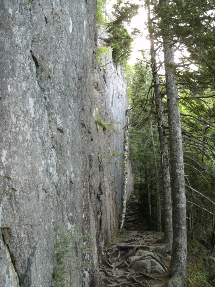 Trail at the Base of the Cliff (Credit: National Park Service)