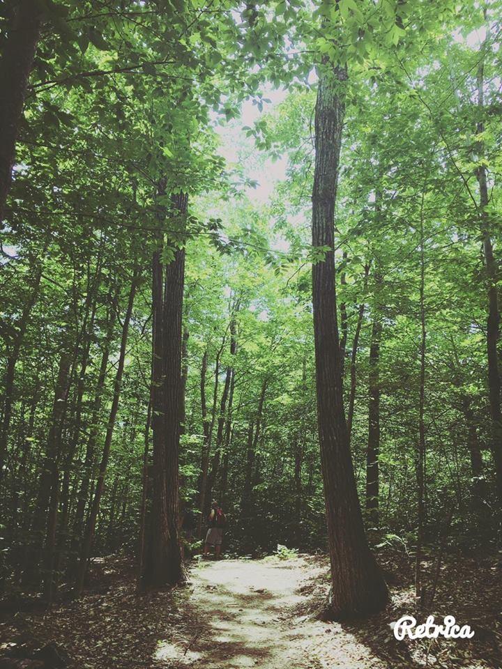Packard Trail