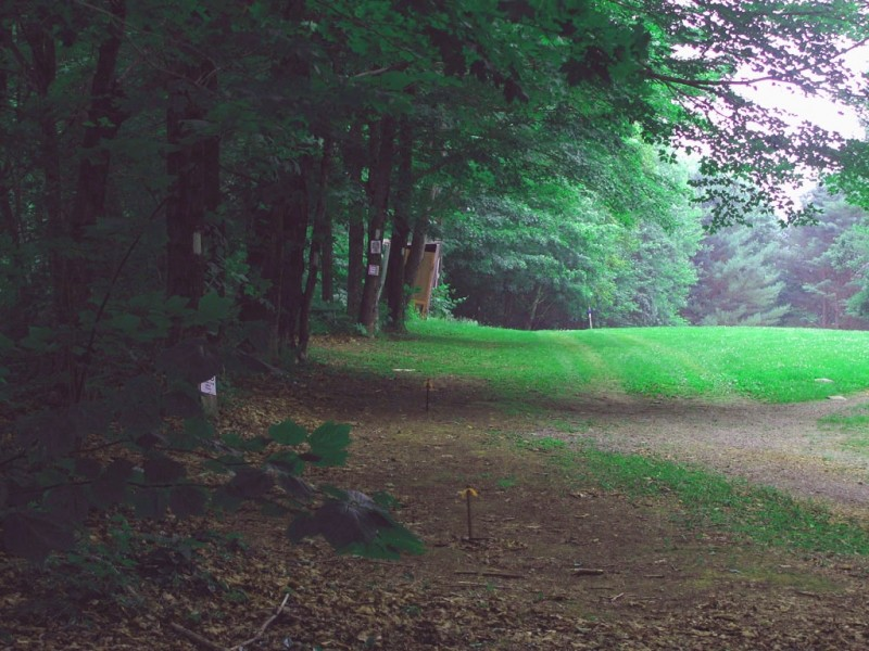 The trail follows the edge of a field (Credit: Joel Alex)