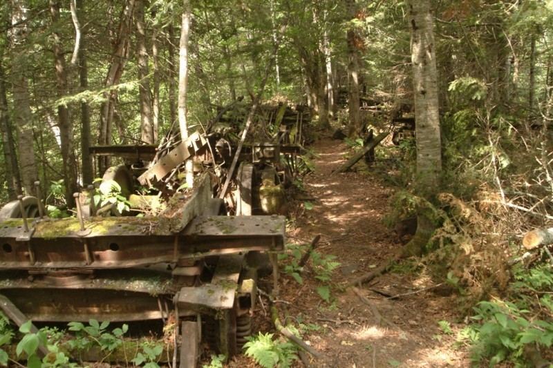 A section of short spur trail near the locomotives (Credit: Maine Bureau of Parks and Lands)