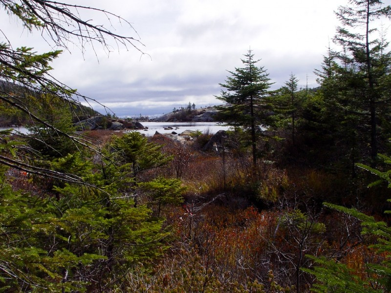 Tumbledown's famous tarn (mountain pond) (Credit: Maine Bureau of Parks and Lands)