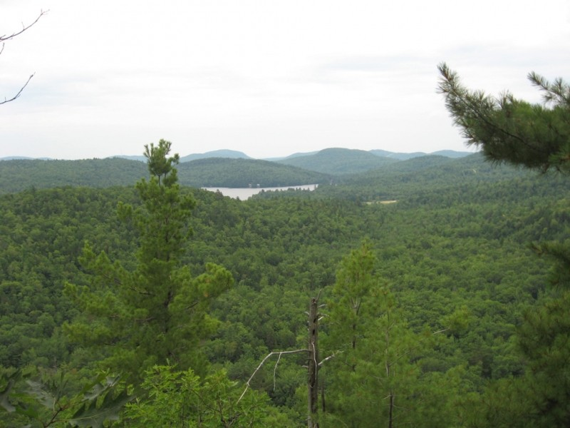 Twitchell Pond from Peaked Bluff (Credit: Landon Fake)