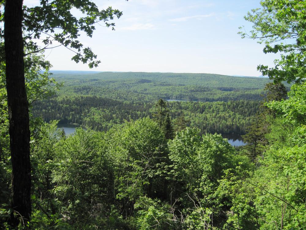 Black Mountain Ridge from Deboullie (Credit: Bill Geller)
