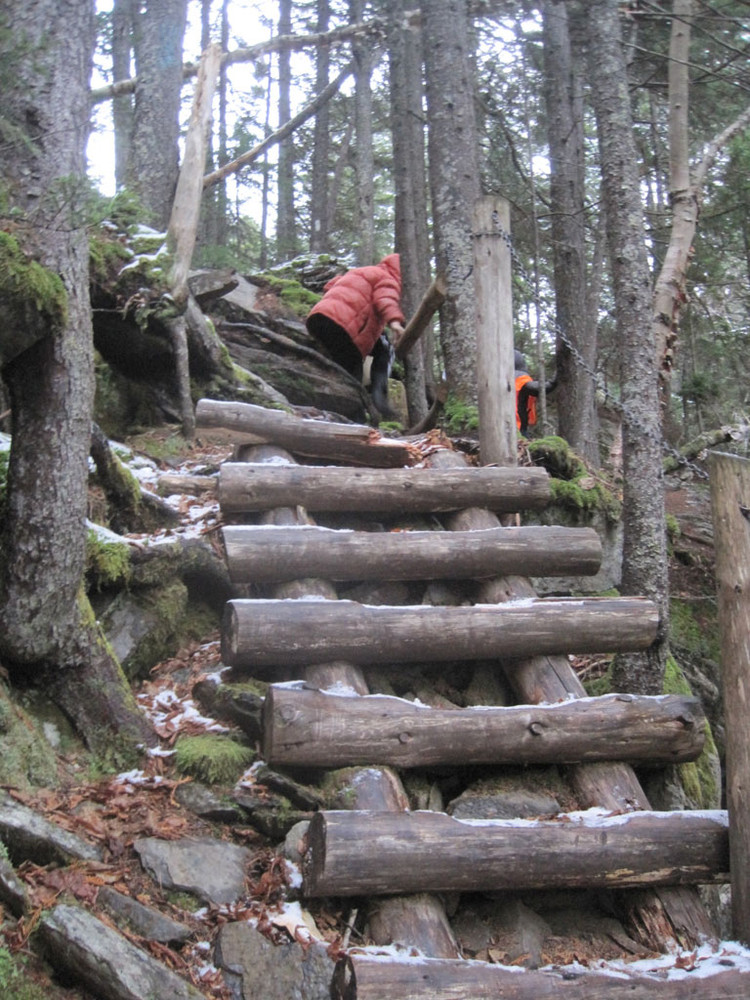 Steep Wooden Stairs into the Gorge (Credit: Nate Morse)