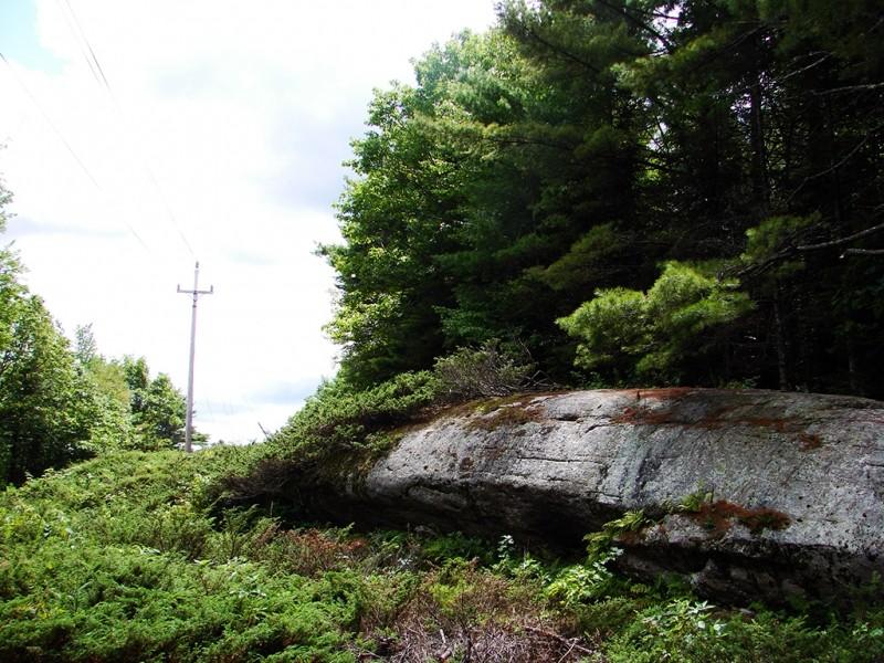 Whale Rock (Credit: Ken Gross)