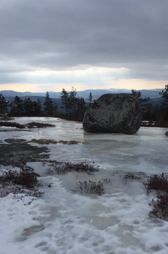 Yellow Trail Ice 2-28-16 (Credit: ReNae Gagnon)