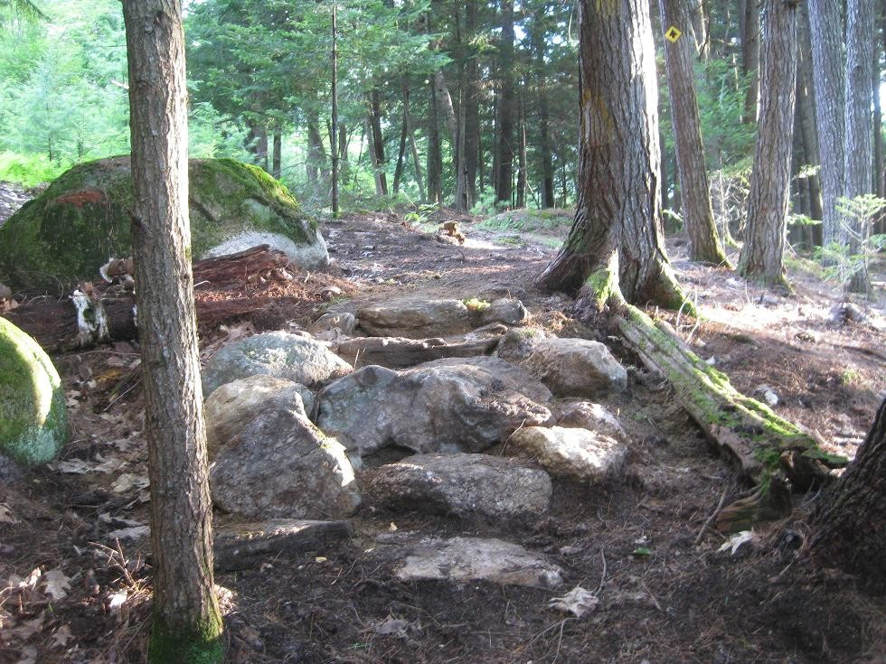Stone Stairs (Credit: Western Foothills Land Trust)