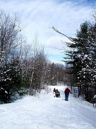 Multi-use trail (Credit: Androscoggin Land Trust)