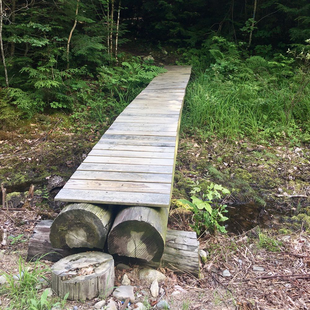 Start of Ducktail Pond Trail (Credit: S.Curry)