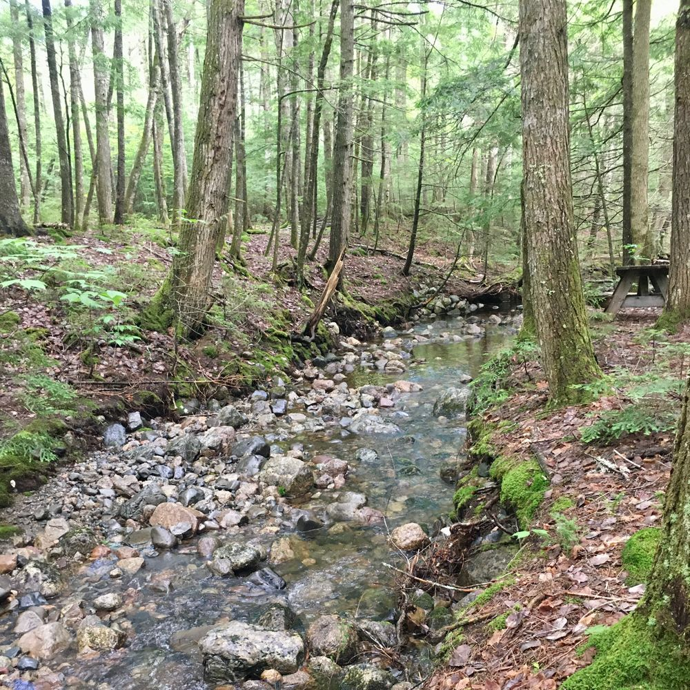 Indian Stream Day Use Area