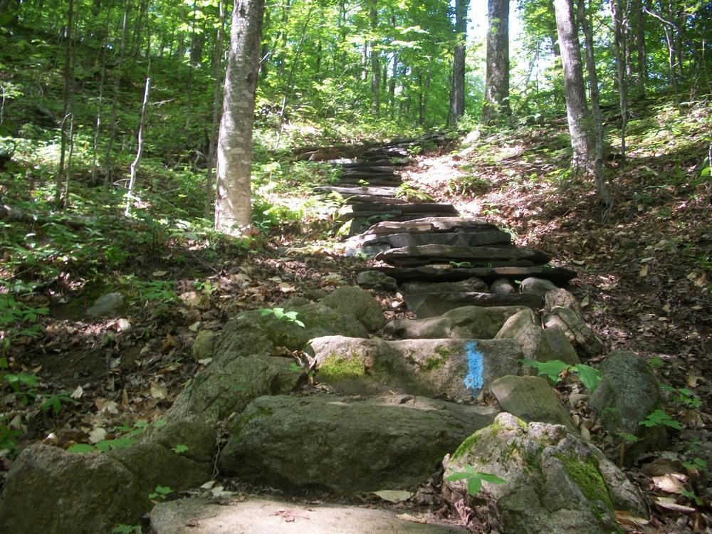 Little Moose Mountain Trail (Credit: AJ Finn)