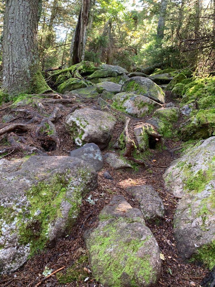 Lots O Rocks (Credit: Heather)