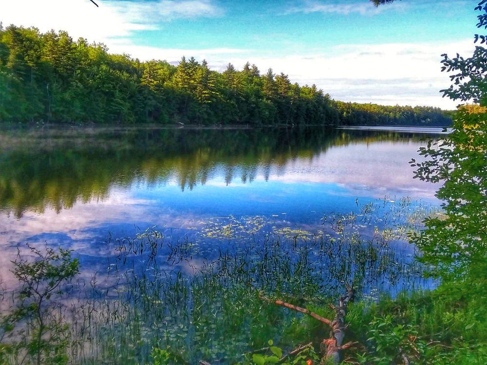 Jamies Pond-Early Morning (Credit: Joshua Hutchins)