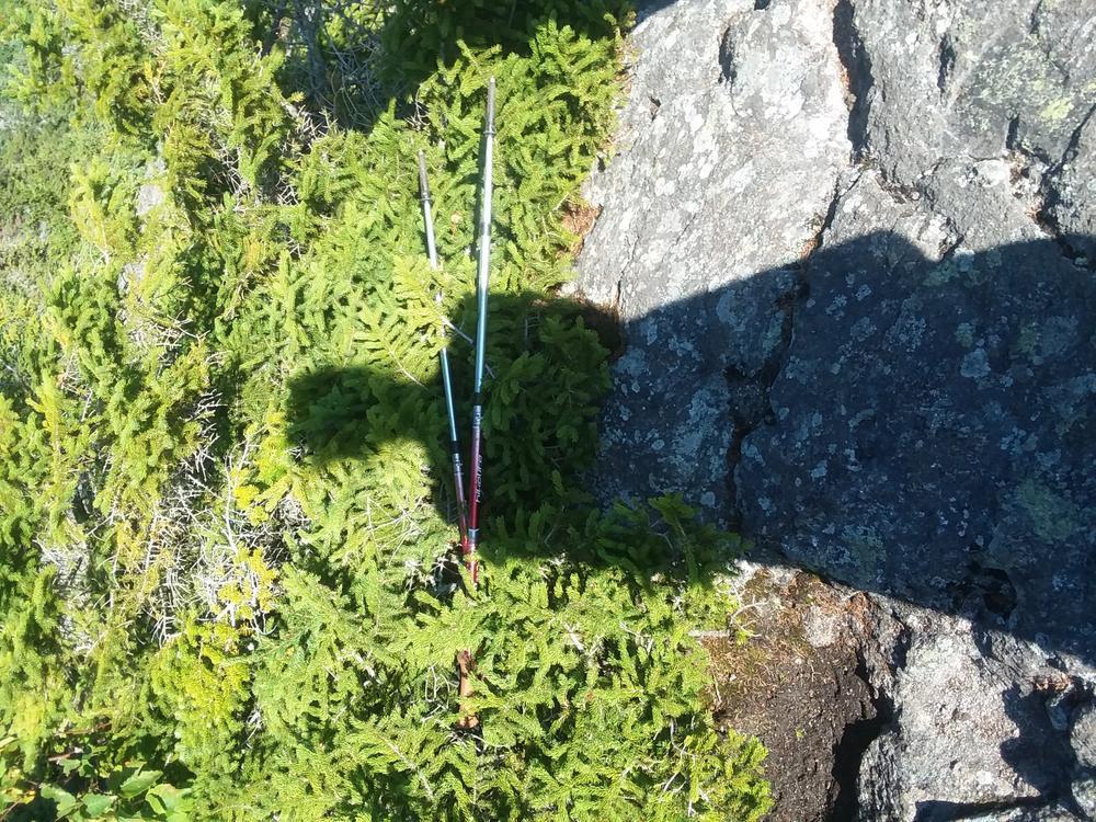 Bigelow Preserve - Safford Brook Trail to Avery Peak