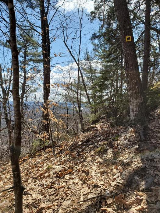 Perham Trail (Credit: Andi)