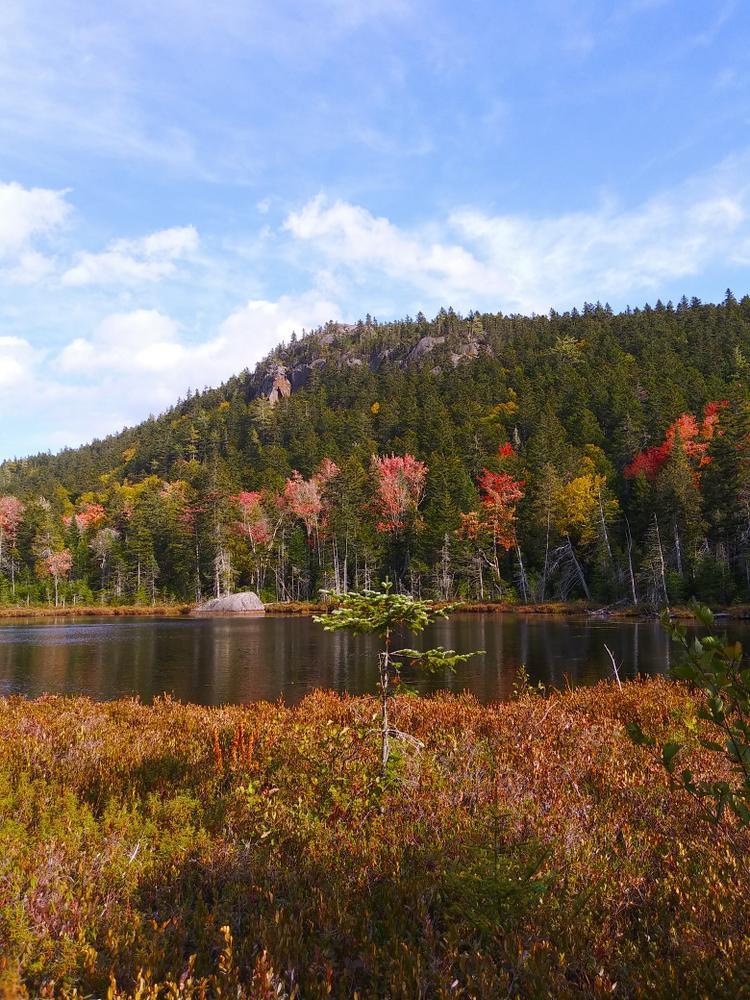 Unnamed pond on Little Moose Loop (Credit: Christopher Keene)