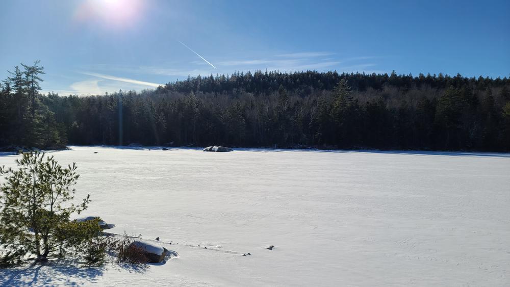 Partridge Pond