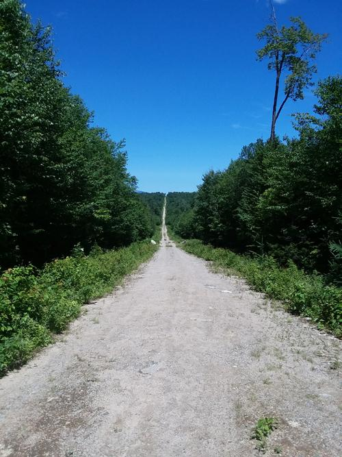 First part of the hike is about a mile along this road (Credit: Steve Lyons)