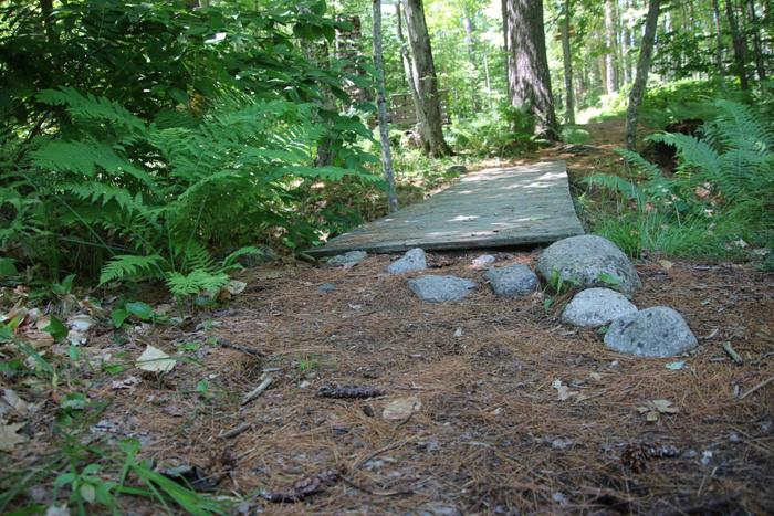 Entrance to another bridge on the Willet Brook Trail (Credit: Enock Glidden)