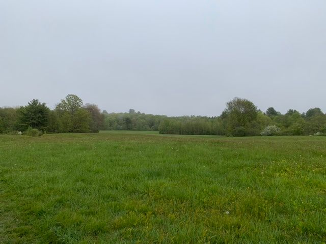 Beautiful Fields (Credit: Laurie Gilman)
