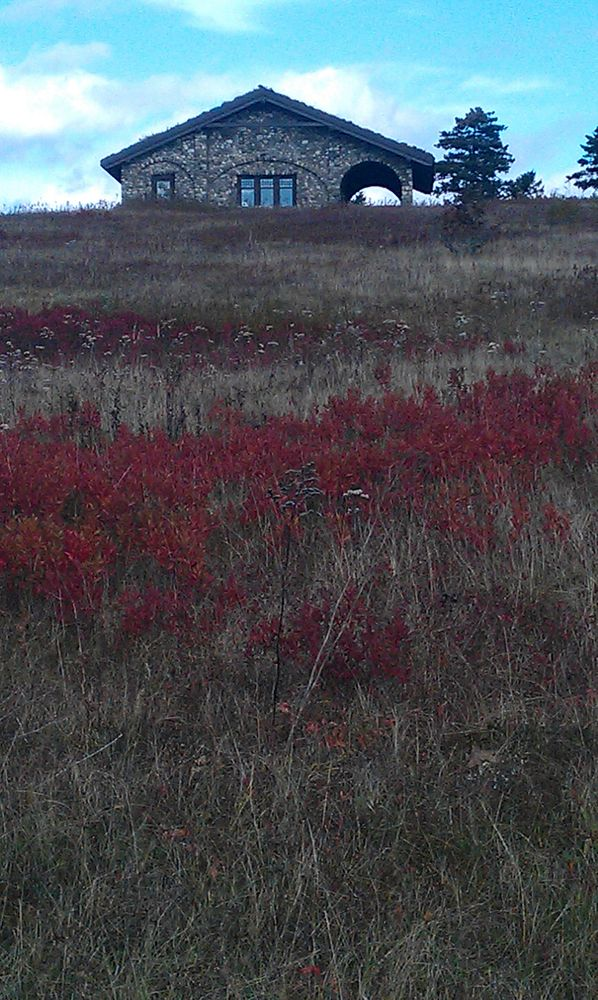 Fall at a Beech Hill (Credit: Nancy)