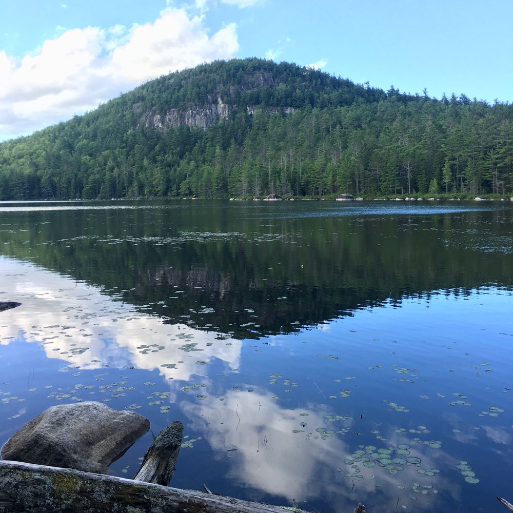 Halfmile Pond Trail (Overlook) (Credit: S.Curry)