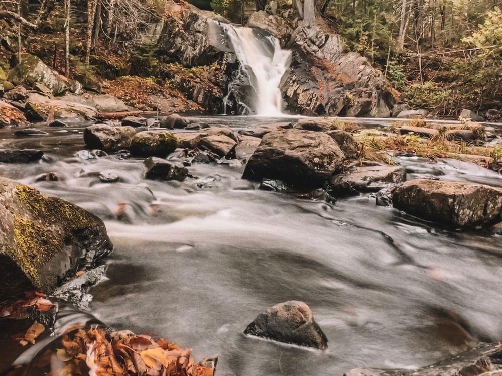 Poplar Stream Falls (Credit: Kelsey Mills)