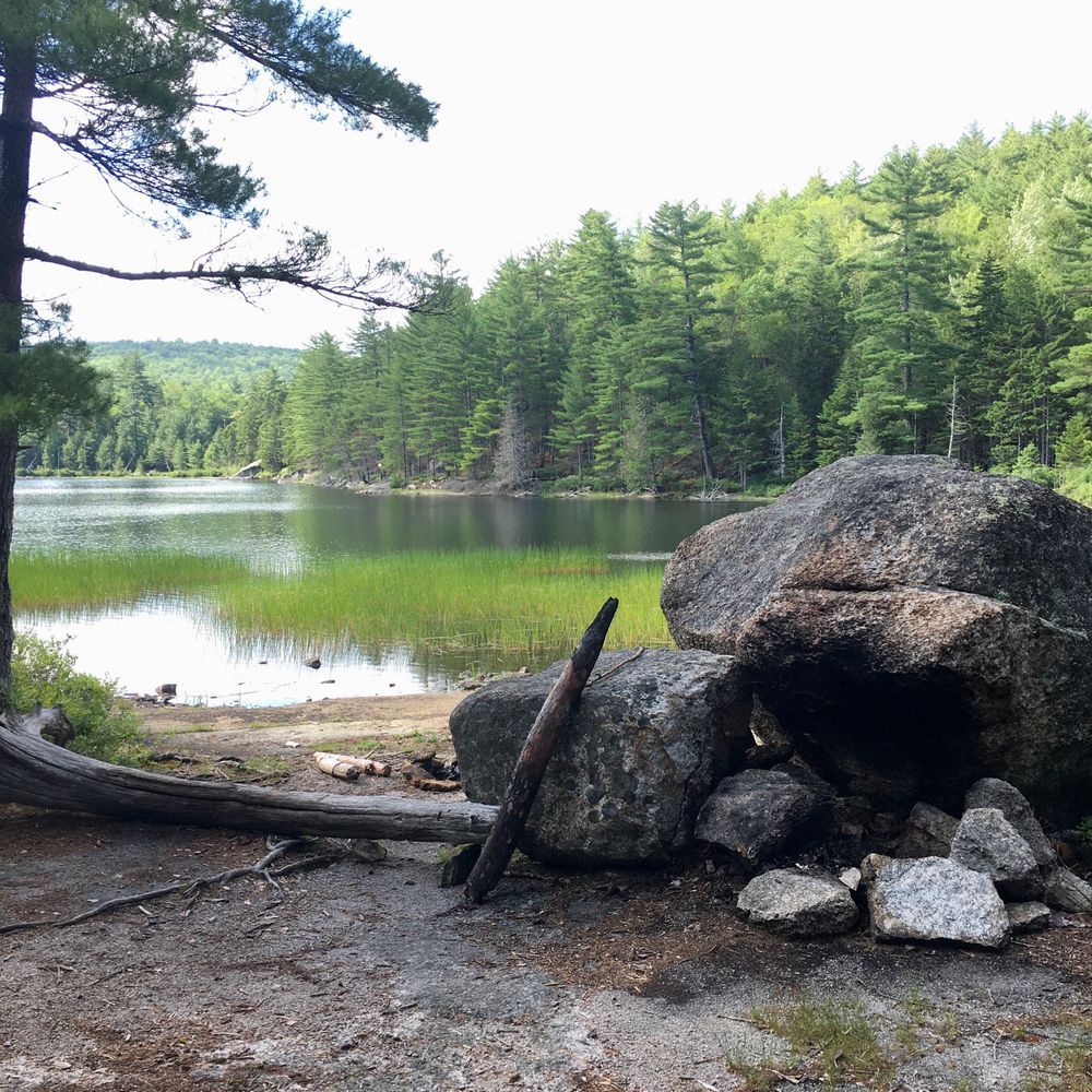 Ducktail Pond Campsite (Credit: S.Curry)