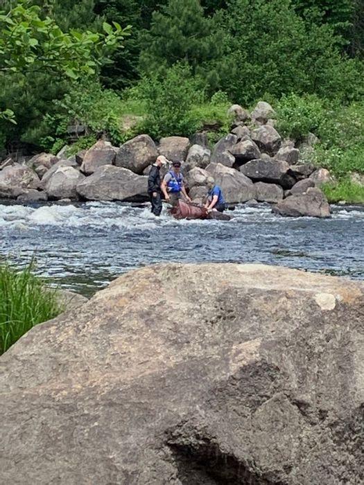 Rapids 1, Us 0