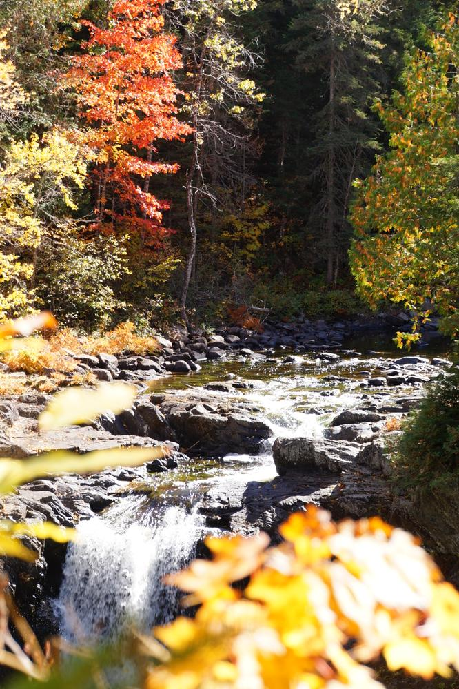 View of upper river from observation deck - Fall (Credit: Jeanette Matlock)