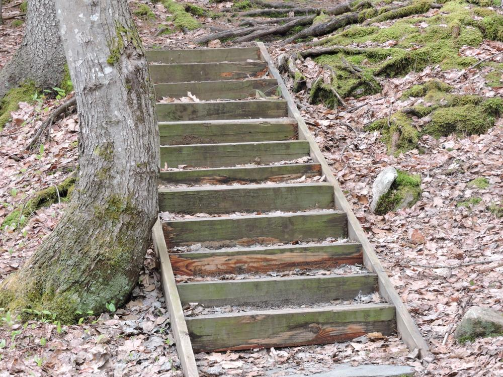 Well maintained stairs throughout. (Credit: Kim Hansen)
