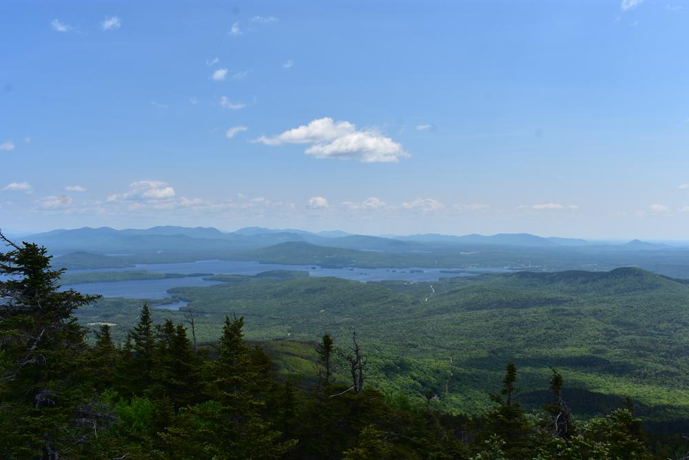 Big Moose Mt - View from summit (Credit: Sheila Ford  sheilafordphotography.com)