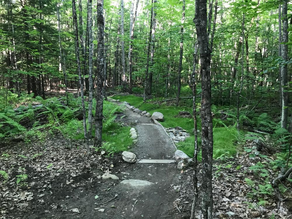Signature Trail