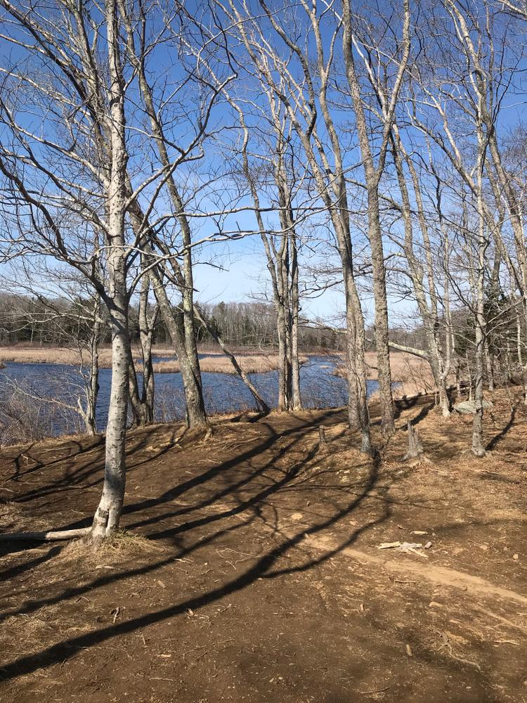 Great Pond Trail