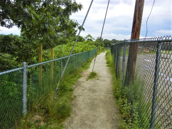Guy wire & anchor, Middle School side of trail (Credit: Healthy Oxford Hills)