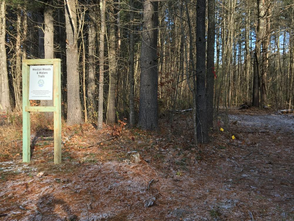 New Trail entrance into Weston Woods from Weston Avenue (Credit: Nancy Williams)