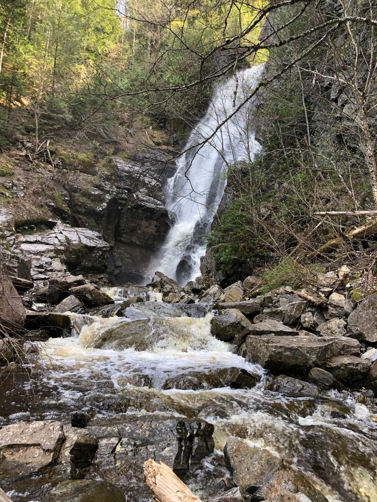 Angel Falls - Spring 2019