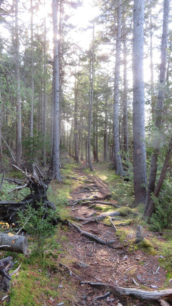 Goose Falls Trail (Credit: Jahfre Fire Eater)