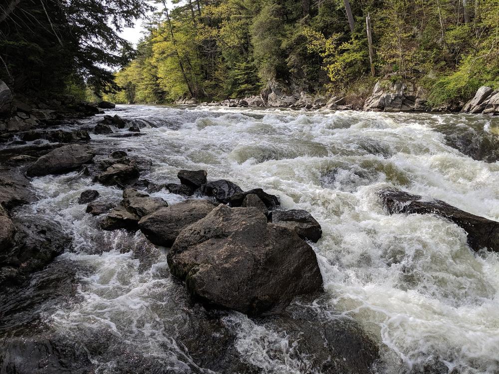 the rapids 5/25/19 (Credit: Michael Hanson)