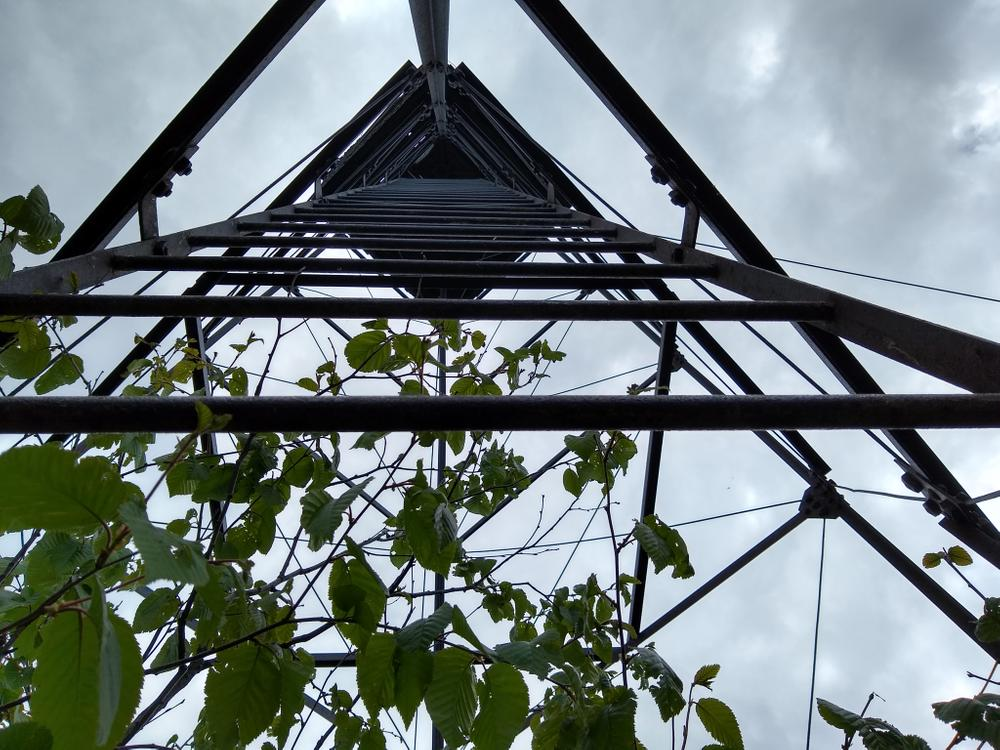 Looking up at the fire tower (Credit: Michelle Moody)
